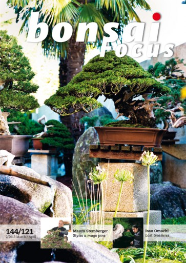 Bonsai Focus EN #121/#144