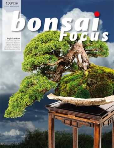 Bonsai Focus EN #133/#156