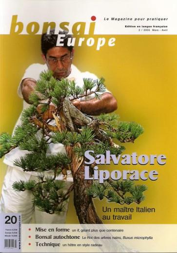 Bonsai Europe FR #20