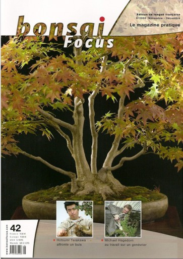 Bonsai Focus FR #42