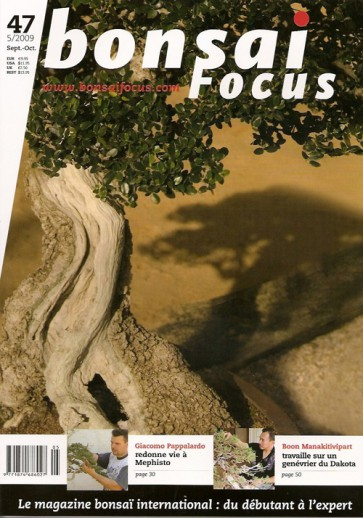 Bonsai Focus FR #47