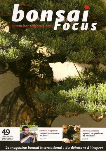 Bonsai Focus FR #49