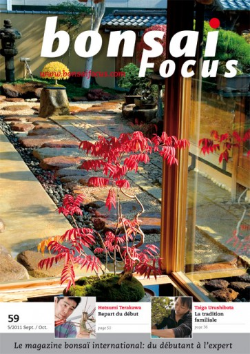 Bonsai Focus FR #59