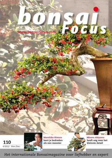 Bonsai Focus NL #110
