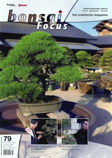 Bonsai Focus NL #79
