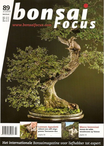 Bonsai Focus NL #89