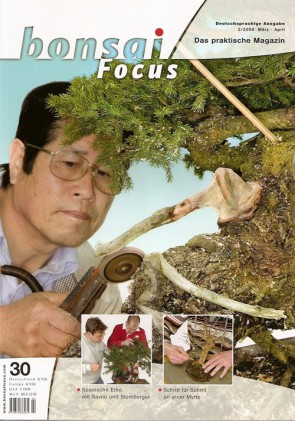 Bonsai Focus DE #30