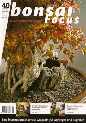 Bonsai Focus DE #40