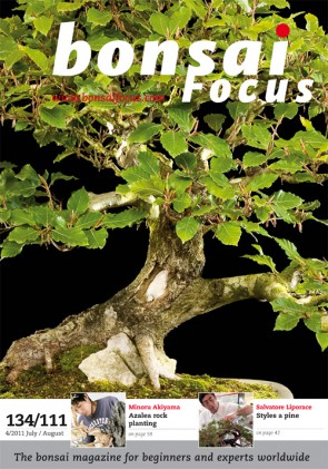 Bonsai Focus EN #111/#134