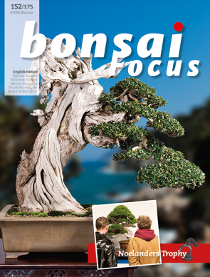 Bonsai Focus EN #152-#175