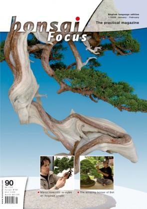 Bonsai Focus EN #90