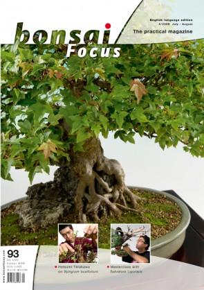 Bonsai Focus EN #93