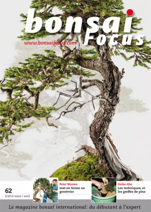 Bonsai Focus FR #62