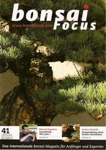 Bonsai Focus DE #41