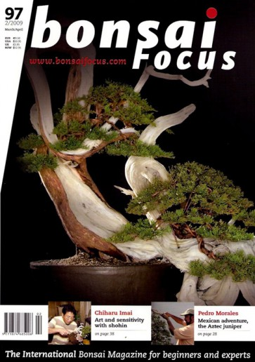 Bonsai Focus EN #97