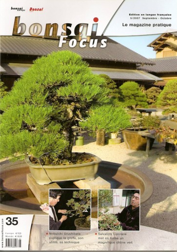Bonsai Focus FR #35
