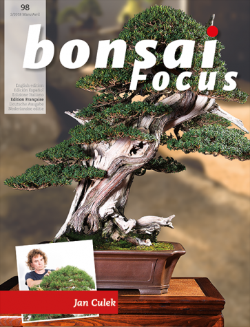 Bonsai Focus FR #98