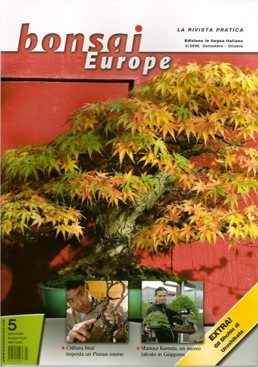 Bonsai Europe IT #05