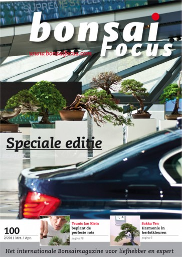Bonsai Focus NL #100