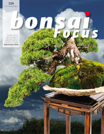 Bonsai Focus NL #124