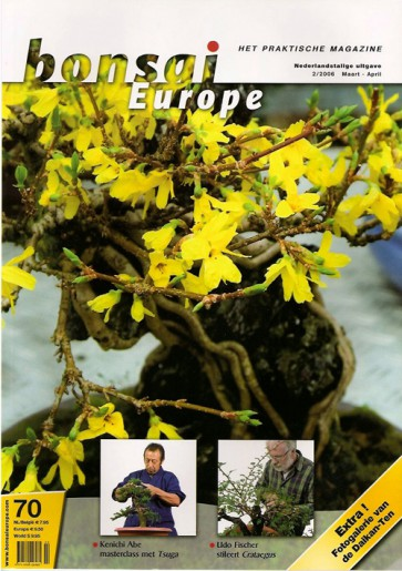 Bonsai Europe NL #70