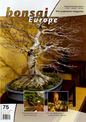 Bonsai Europe NL #75