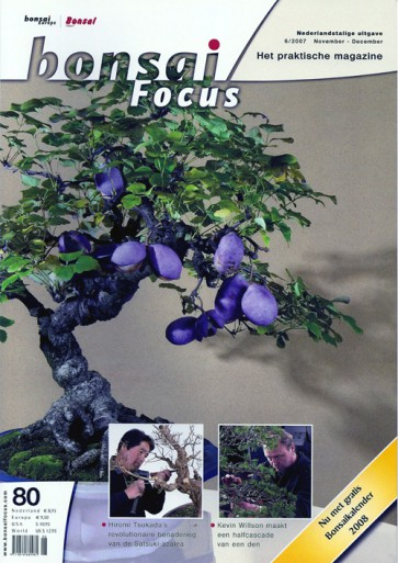 Bonsai Focus NL #80