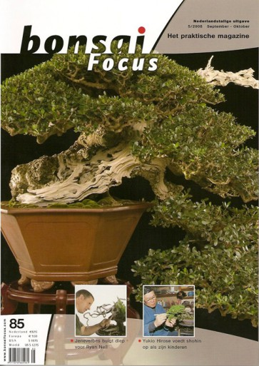 Bonsai Focus NL #85