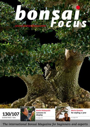 Bonsai Focus EN #107/#130