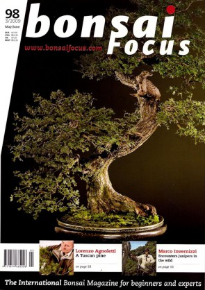 Bonsai Focus EN #98