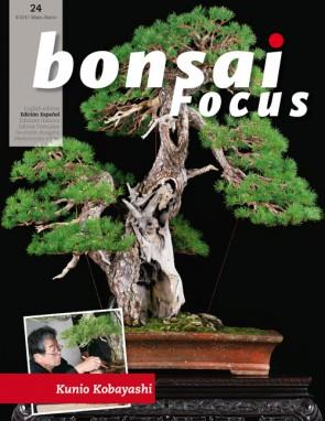 Bonsai Focus ES #24