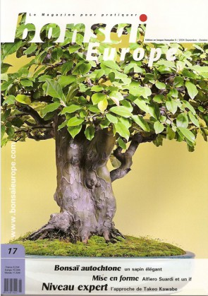 Bonsai Europe FR #17