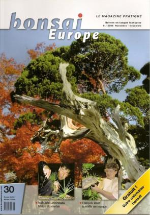 Bonsai Europe FR #30
