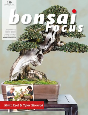 Bonsai Focus NL #139