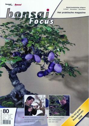Bonsai Focus NL #80