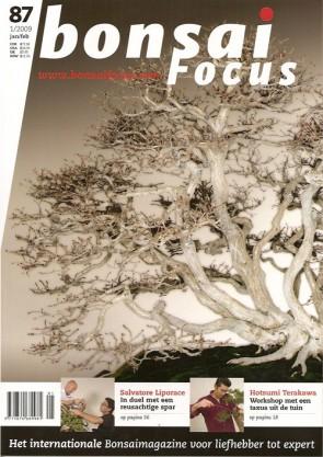 Bonsai Focus NL #87