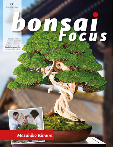 Bonsai Focus DE #88