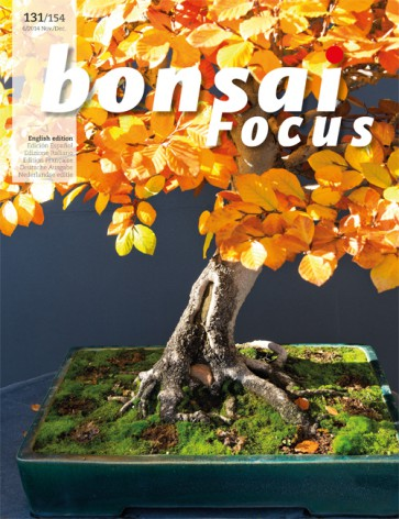 Bonsai Focus EN #131/#154