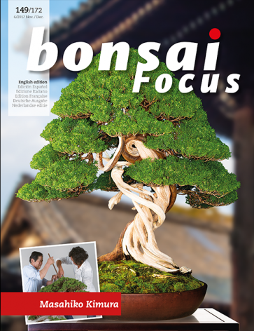 Bonsai Focus EN #149/#172