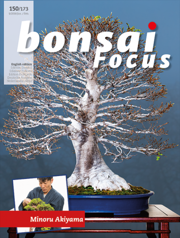 Bonsai Focus EN #150/#173