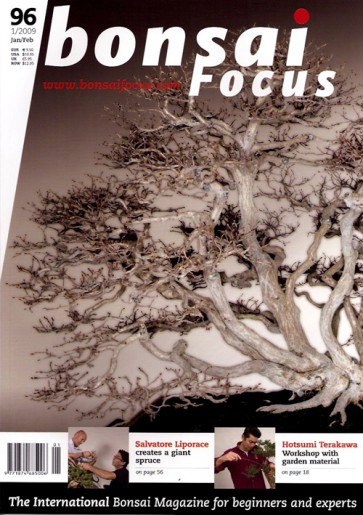 Bonsai Focus EN #96