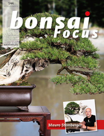 Bonsai Focus NL #144
