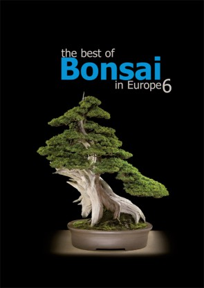 The best of Bonsai in Europe #6