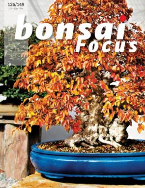 Bonsai Focus EN #126/#149