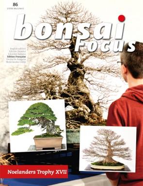 Bonsai Focus FR #86