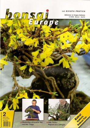 Bonsai Europe IT #02