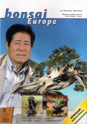 Bonsai Europe IT #03