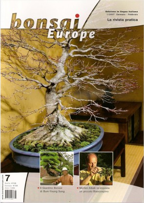 Bonsai Europe IT #07