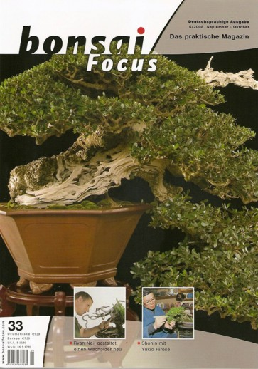 Bonsai Focus DE #33