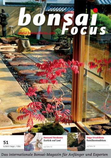 Bonsai Focus DE #51